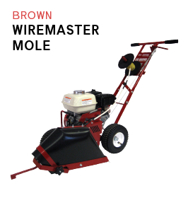 Brown Wiremaster Mole